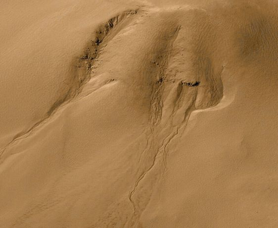 The Gullies Of Mars