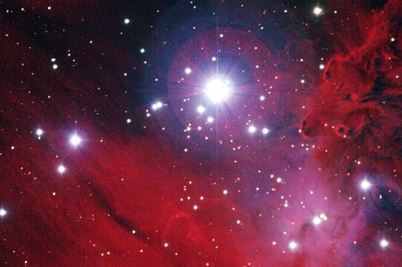 NGC 2264: Stars, Dust, and Gas