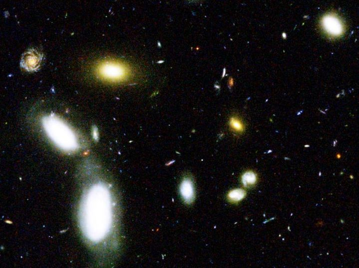 Galaxies in the GOODS