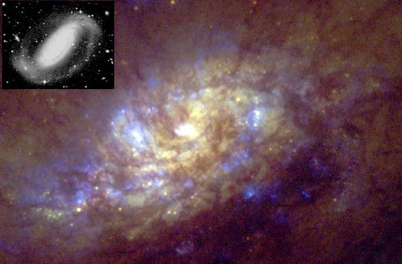 Starbirth in NGC 1808