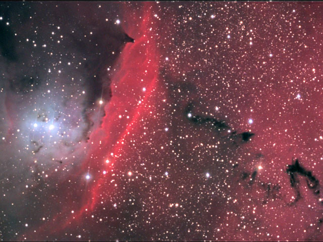 In the Center of NGC 6559