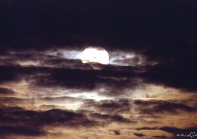 Partial Eclipse, Cloudy Day