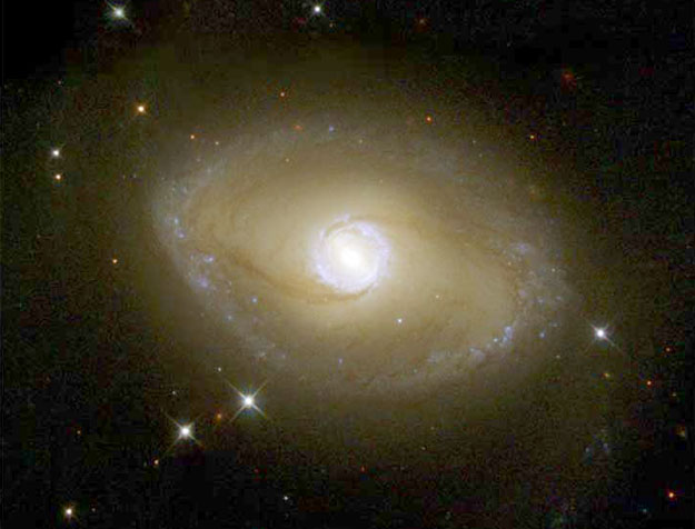 The Galactic Ring of NGC 6782
