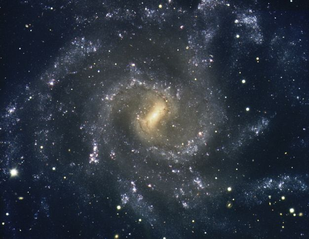 The Arms of NGC 7424
