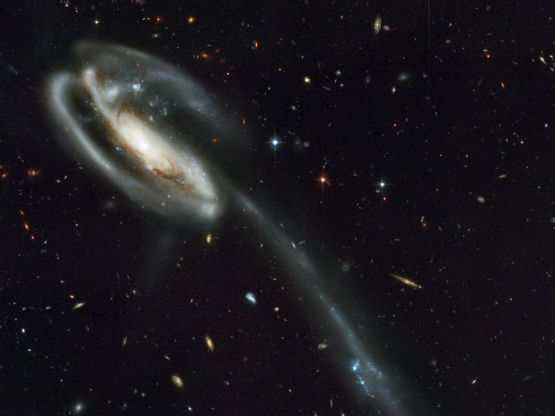 Arp 188 and the Tadpoles Tidal Tail