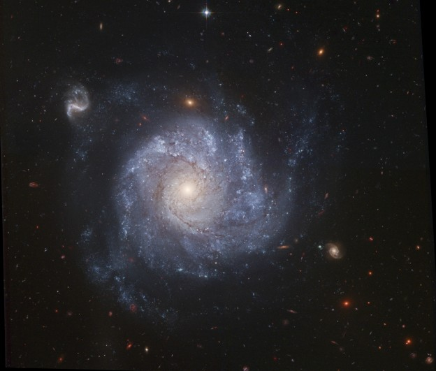 NGC 1309 and Friends