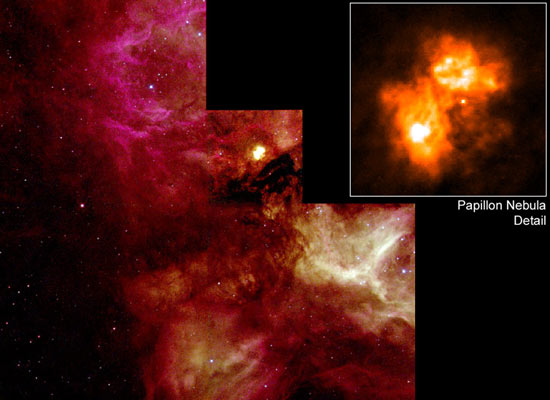 N159 and the Papillon Nebula
