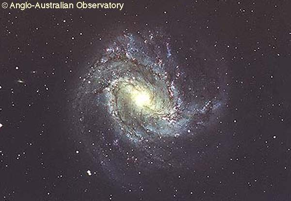 M83: A Barred Spiral Galaxy