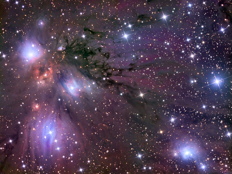 Stars, Dust and Nebula in NGC 2170