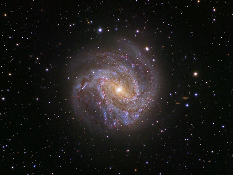 Spiral Galaxy M83: The Southern Pinwheel