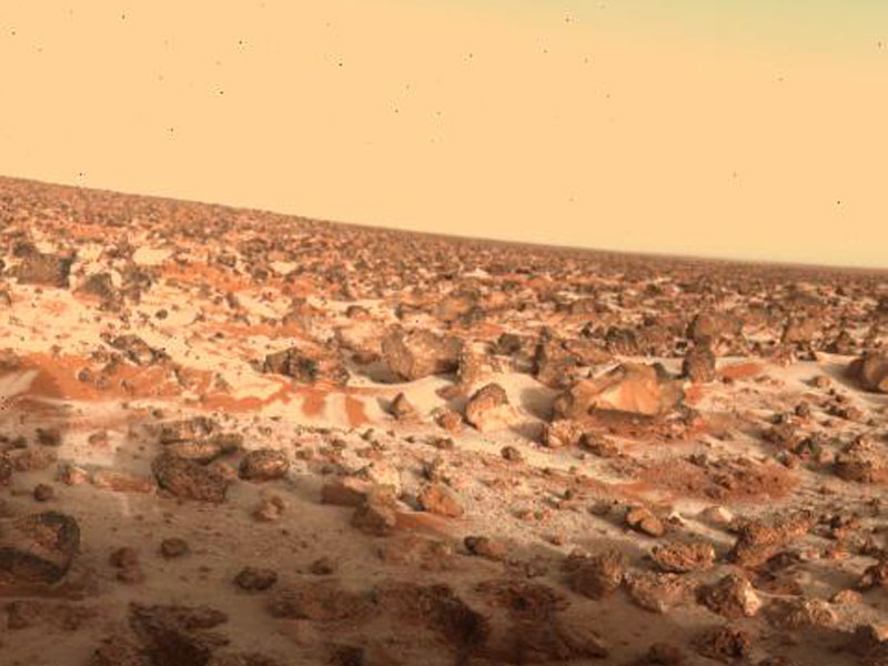 Could Hydrogen Peroxide Life Survive on Mars
