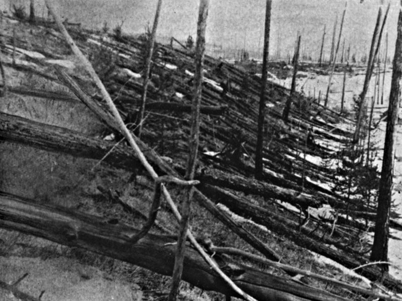 Tunguska: The Largest Recent Impact Event