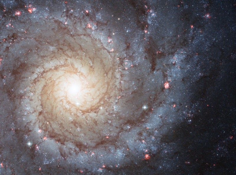 M74: The Perfect Spiral