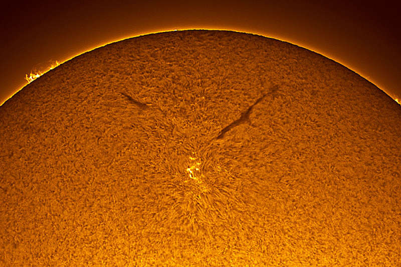 A Sunspot in the New Solar Cycle