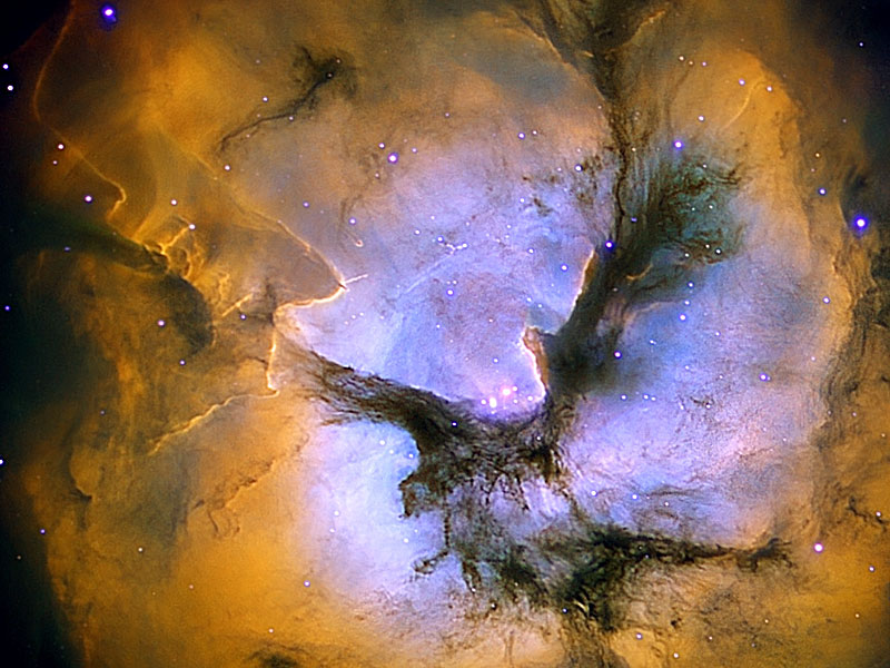 In the Center of the Trifid Nebula