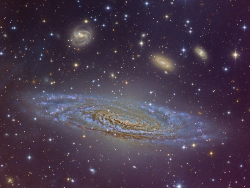 Beautiful Spiral NGC 7331