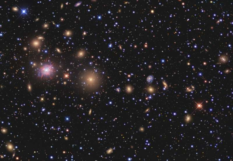 Galaxies of the Perseus Cluster