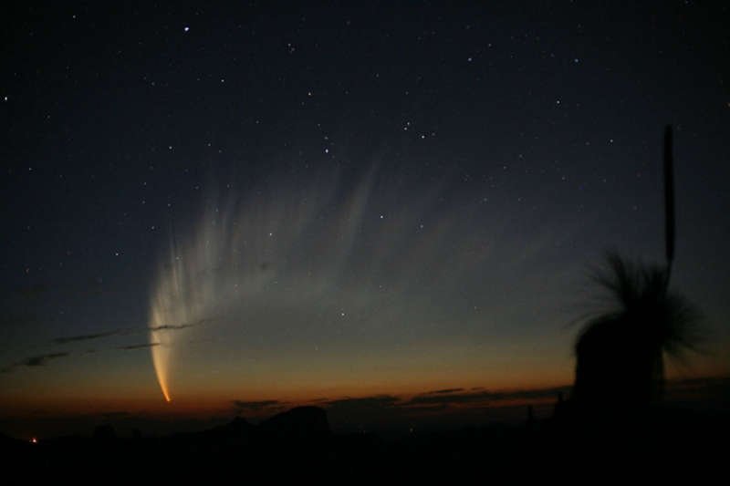 The Magnificent Tail of Comet McNaught