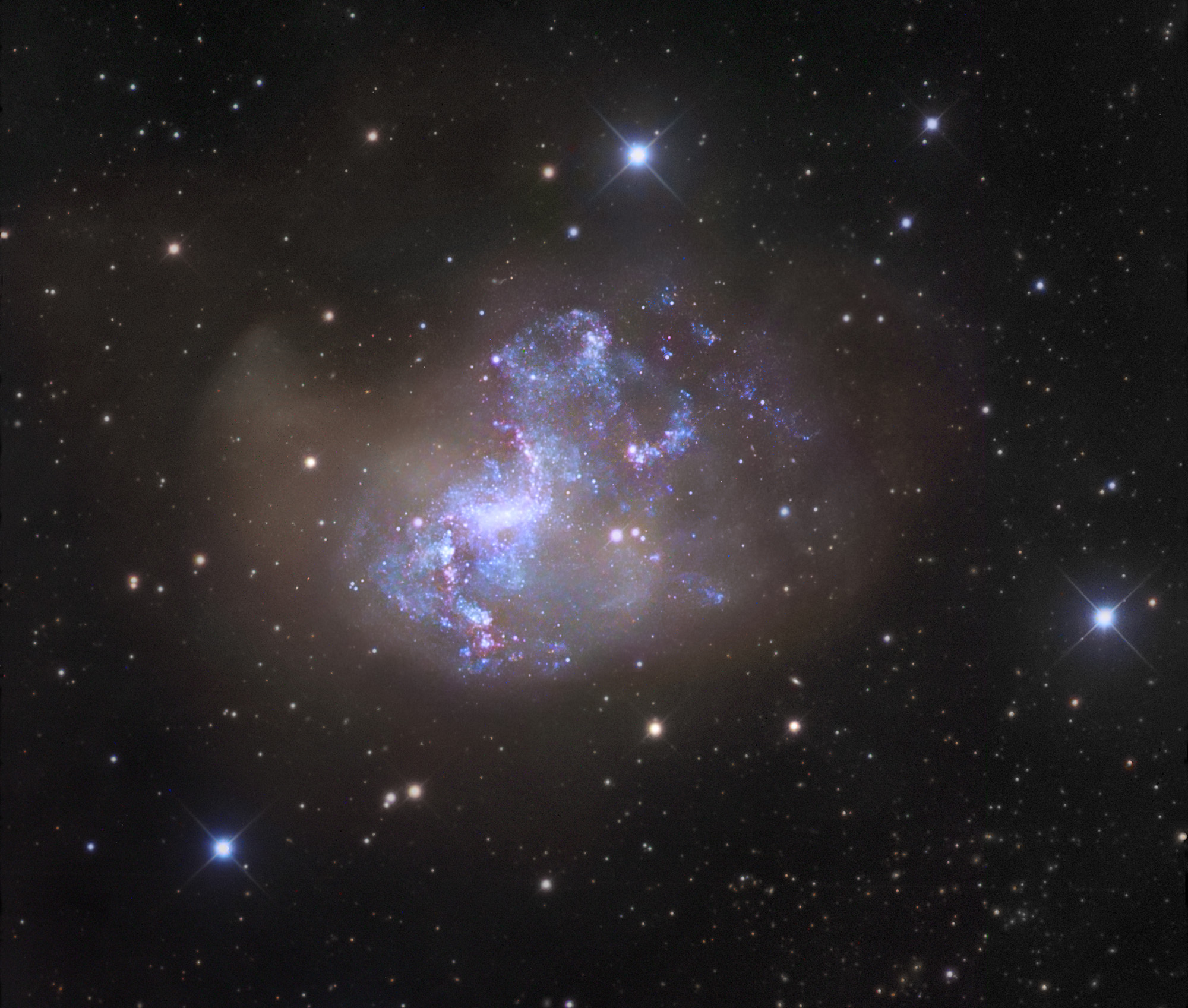 Unusual Starburst Galaxy NGC 1313