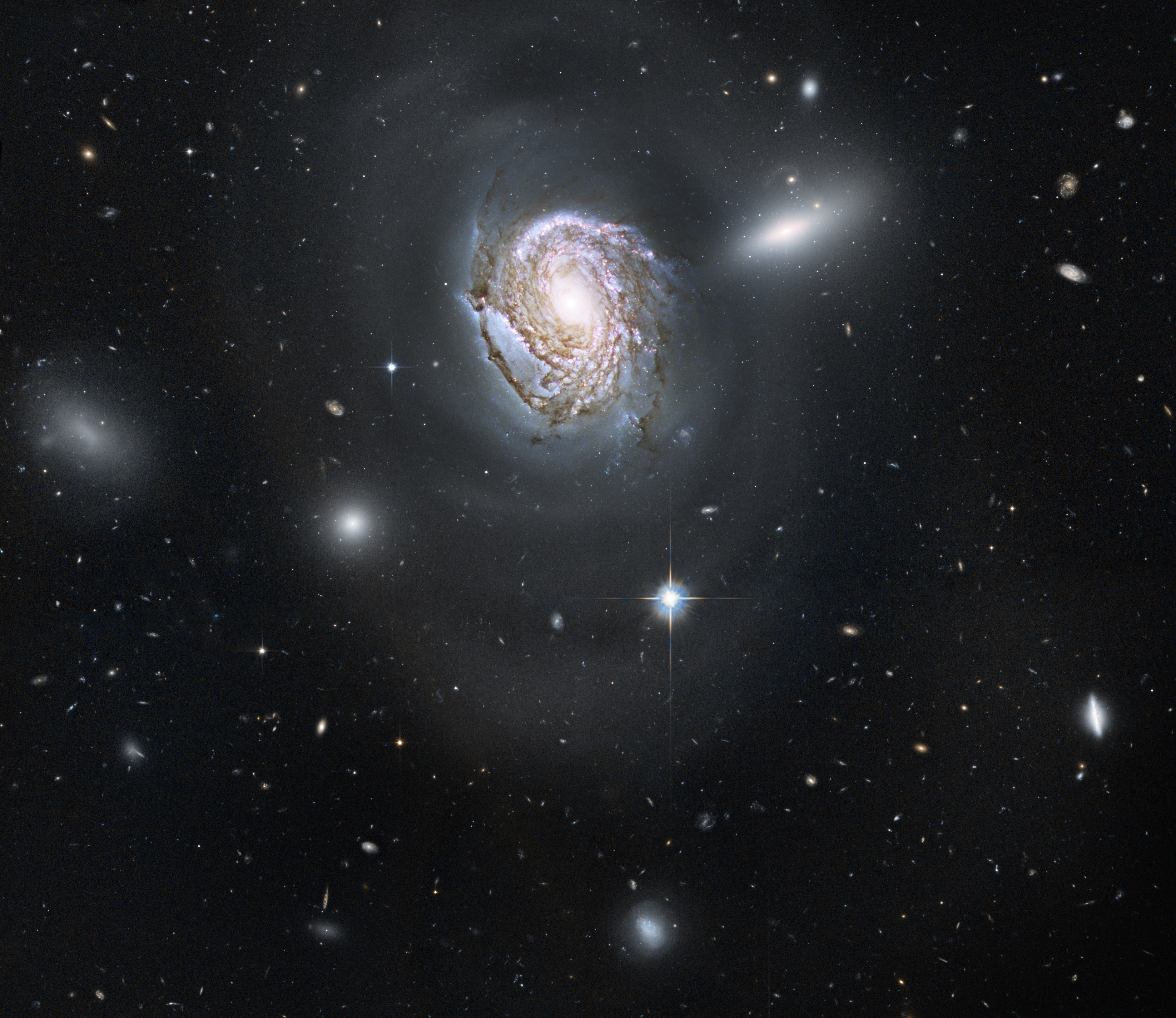NGC 4911: Spiral Diving into a Dense Cluster