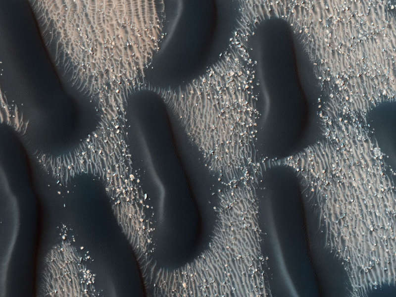 A Dark Dune Field in Proctor Crater on Mars