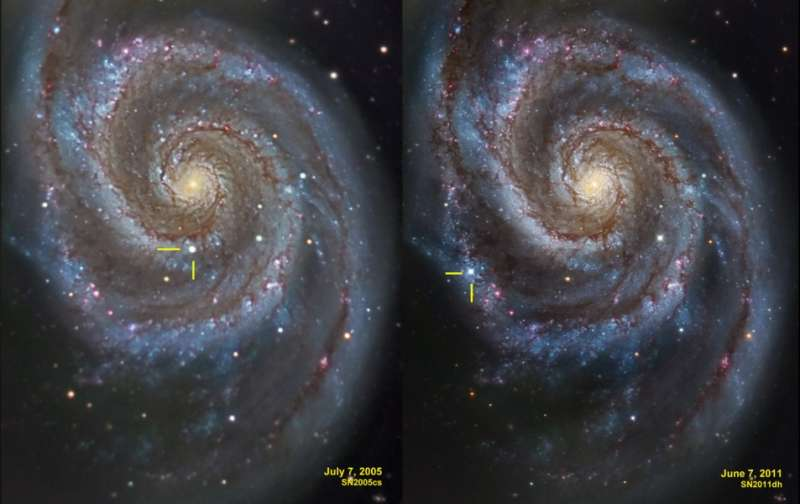 Supernovae in the Whirlpool