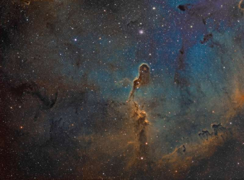 The Elephant s Trunk in IC 1396