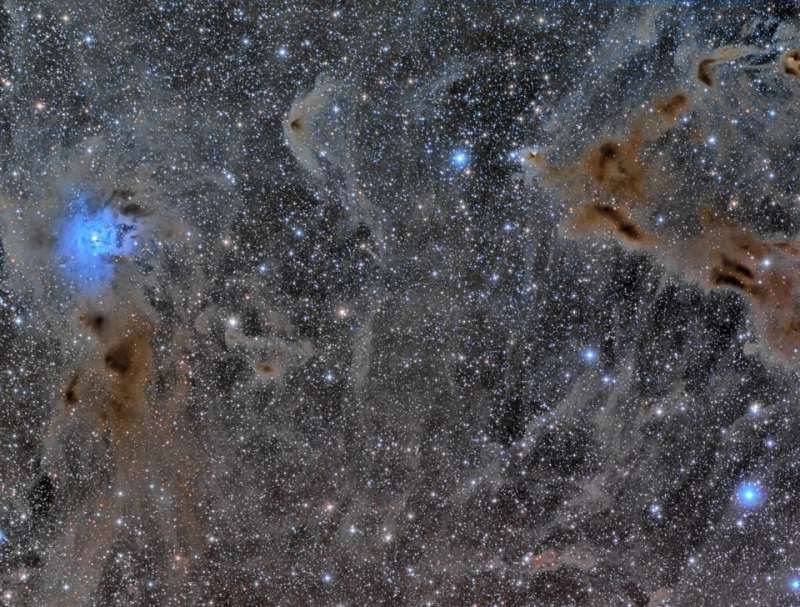The Iris Nebula in a Field of Dust