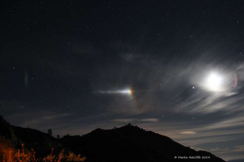 Moondog Night