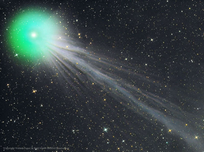 The Complex Ion Tail of Comet Lovejoy