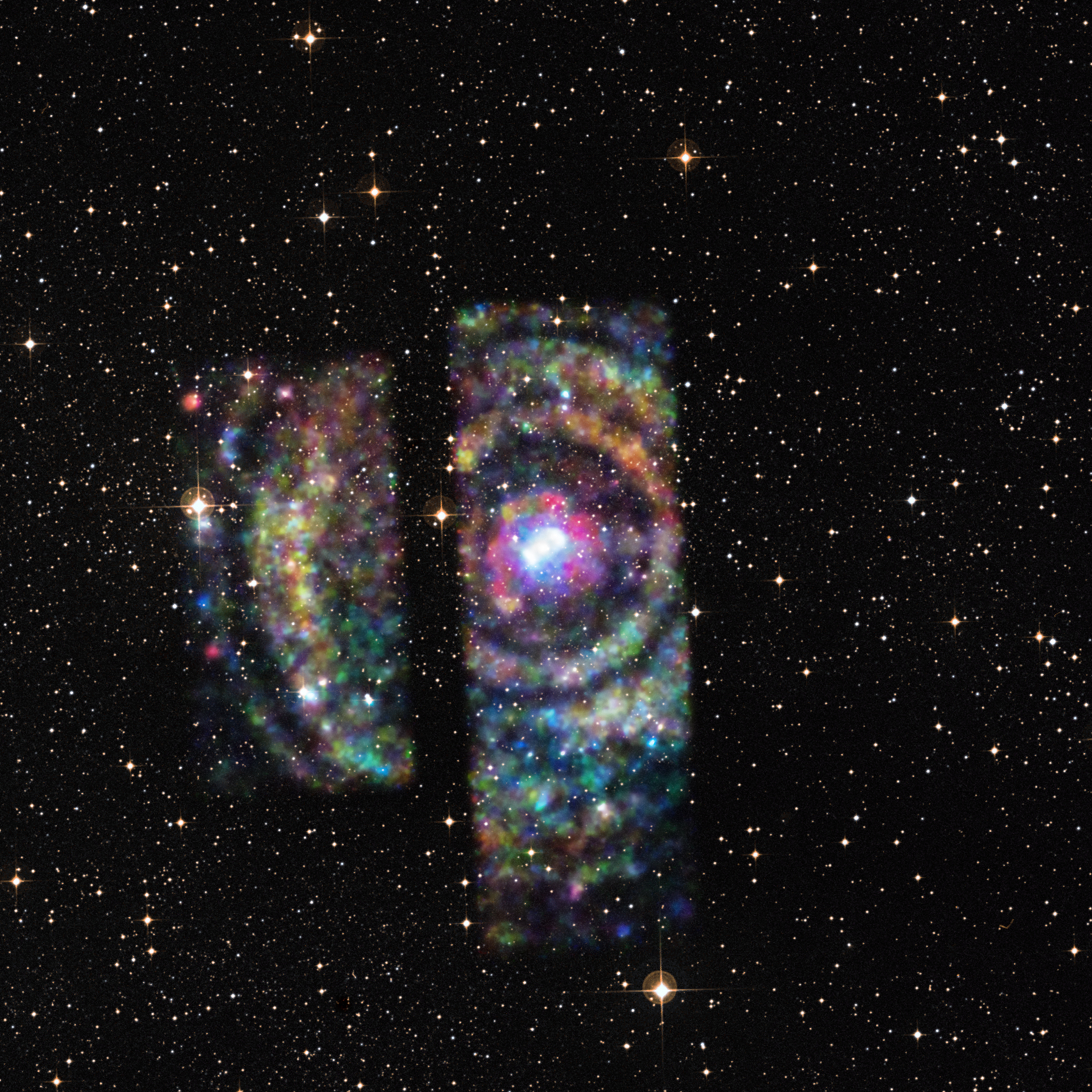 X ray Echoes from Circinus X 1