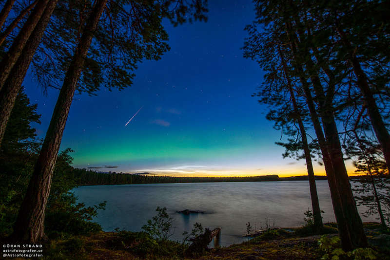 Perseid, Aurora, and Noctilucent Clouds