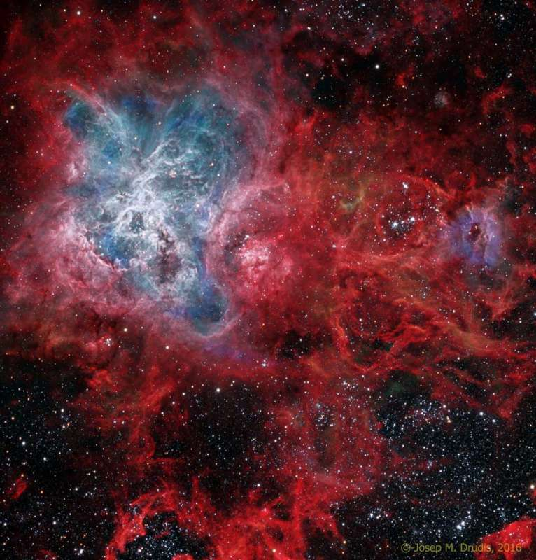 The Cosmic Web of the Tarantula Nebula