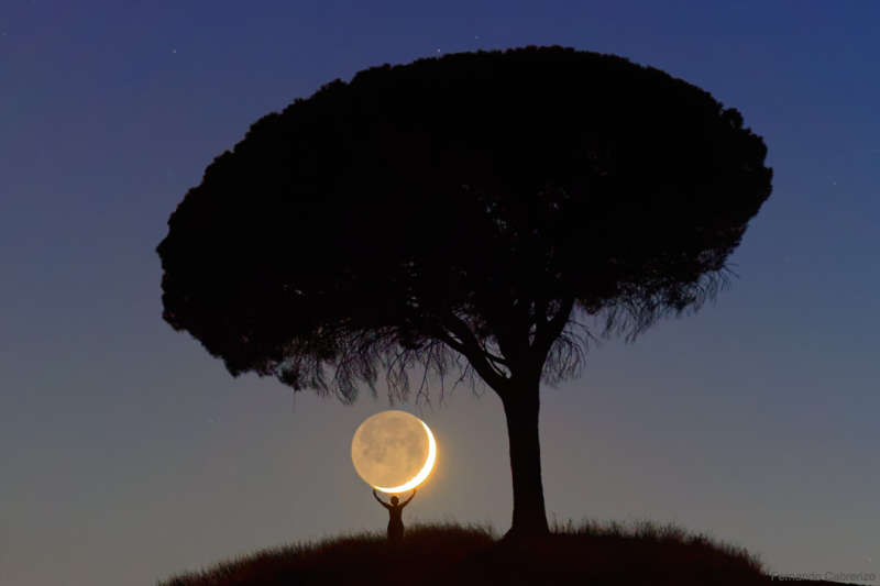 I Brought You the Moon