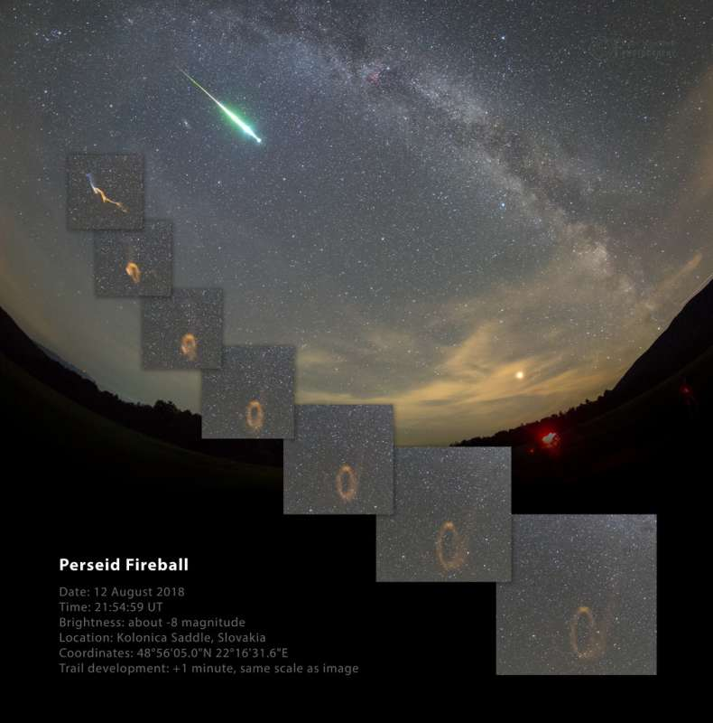 Perseid Fireball and Persistent Train