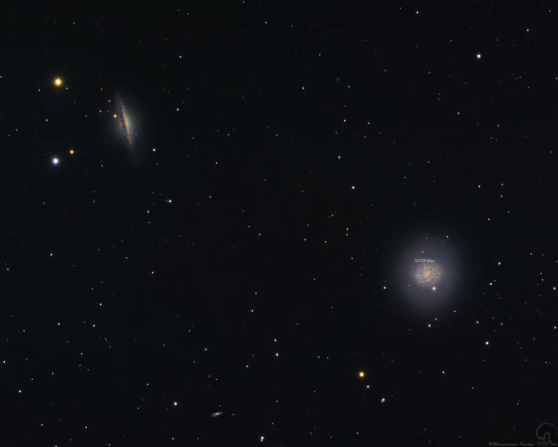 Cetus Galaxies and Supernova