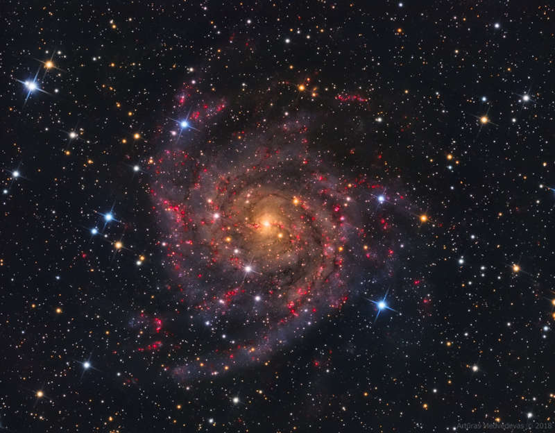 IC 342: The Hidden Galaxy