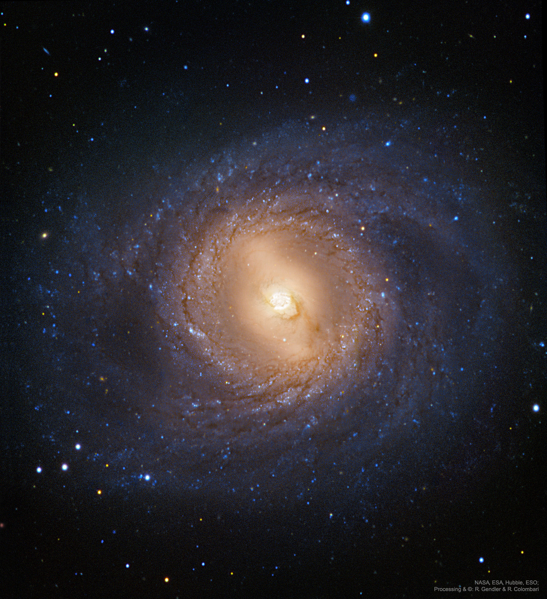 M95: Spiral Galaxy with an Inner Ring