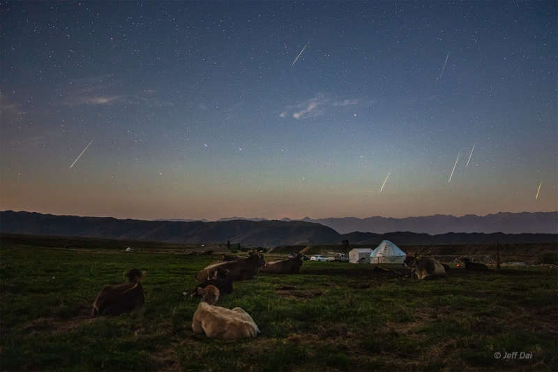 The Perseids and the Plough