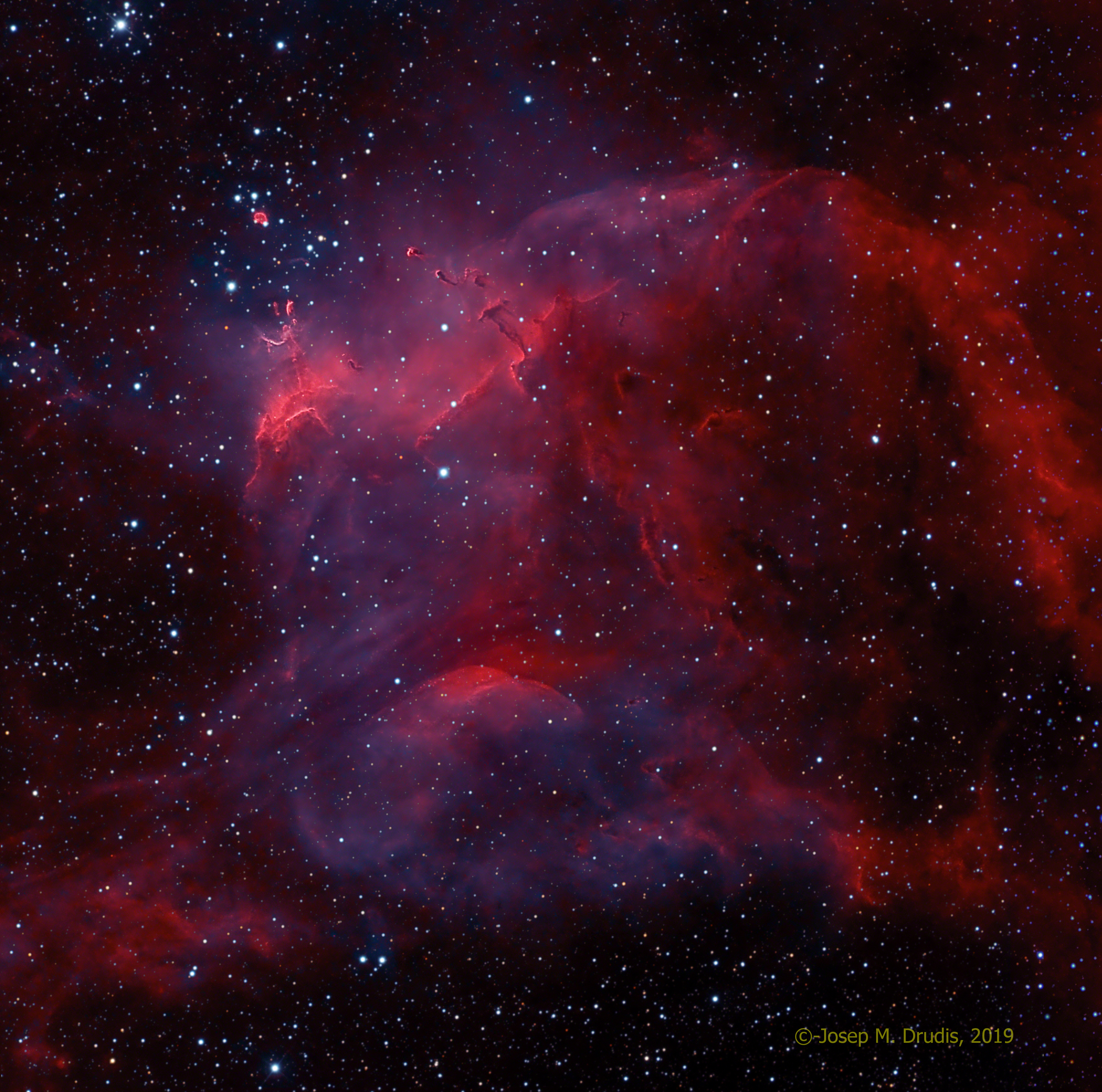NGC 3572 and the Southern Tadpoles