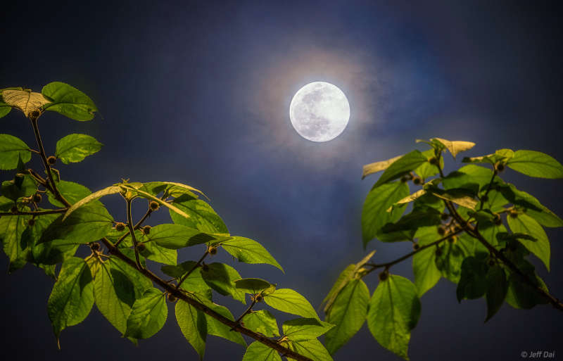 Full Moon of Spring