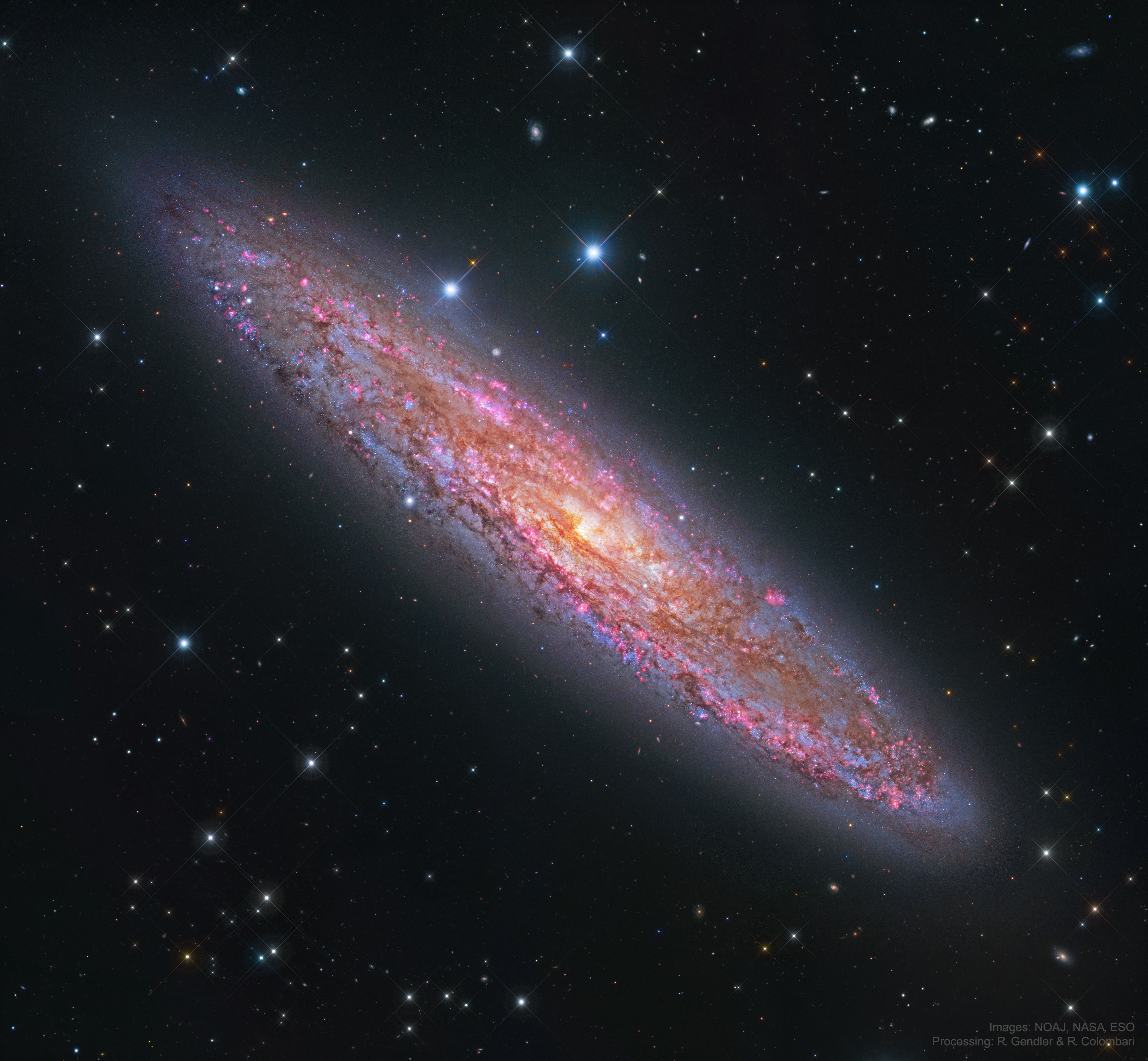 NGC 253: The Silver Coin Galaxy