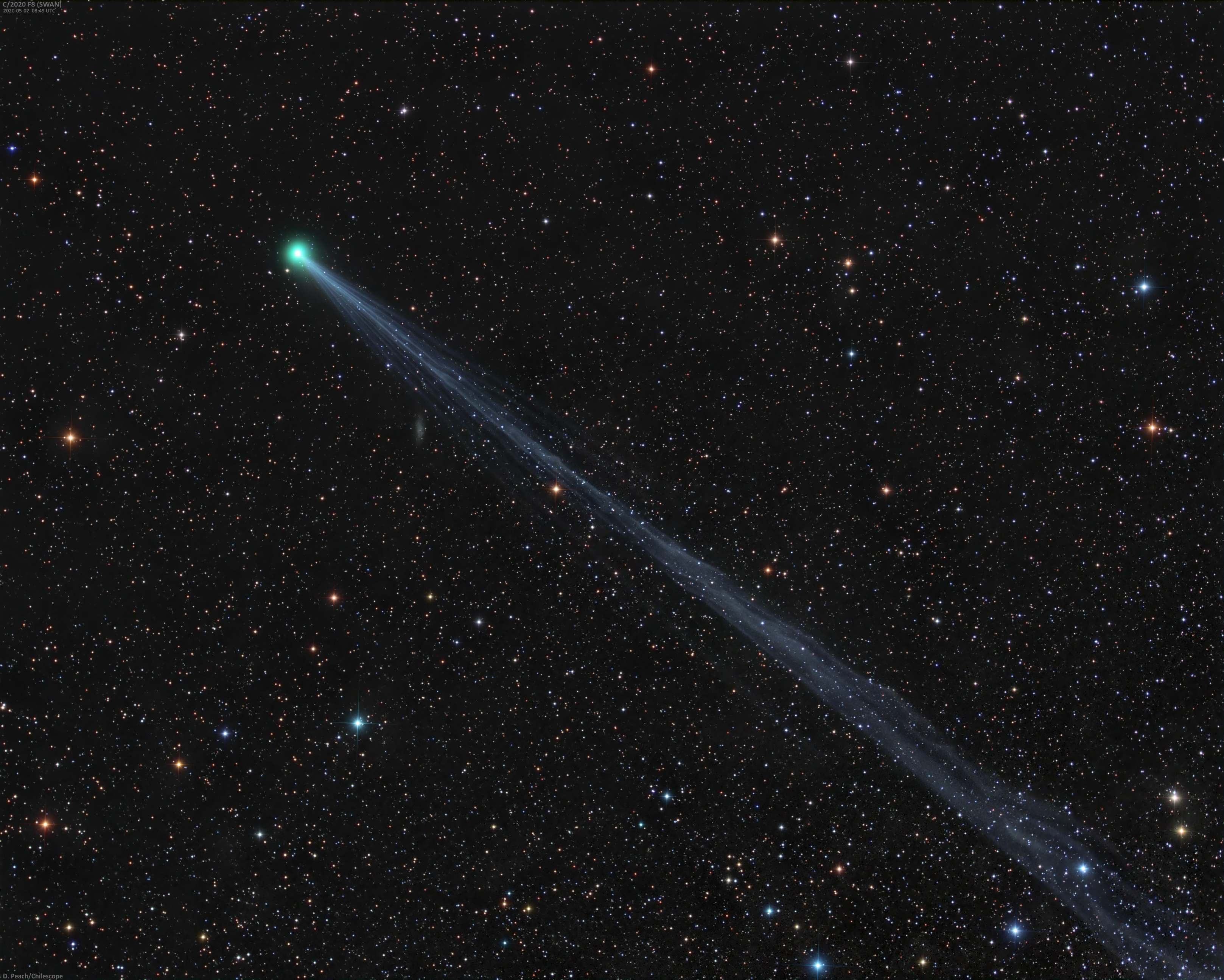 Long Tailed Comet SWAN