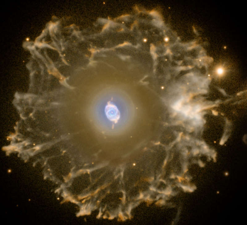 Halo of the Cats Eye