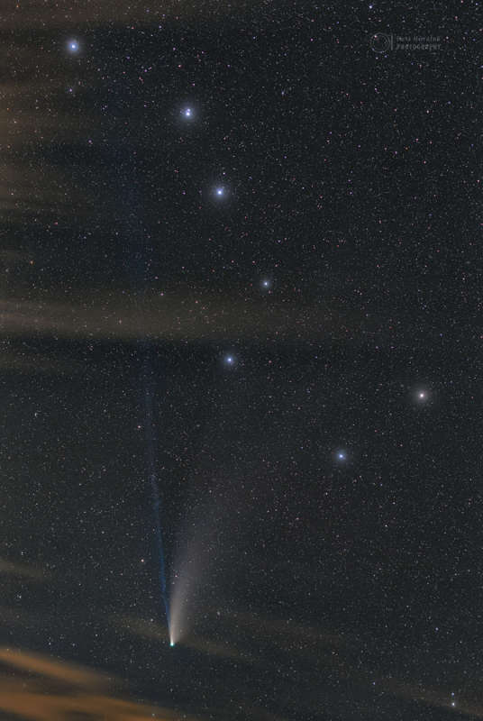 Remembering NEOWISE